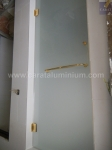 SHOWER DOOR WITH GOLD PLATED ACCESSORIES